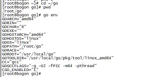 linux_go_env